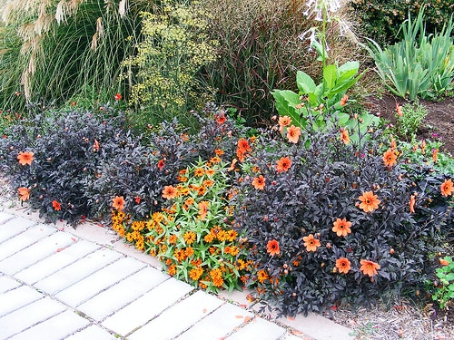 Landscaping Your Yard garden design: garden design with formal landscapes dirt simple